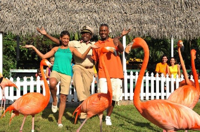 Touristen gemeinsam mit Flamingos