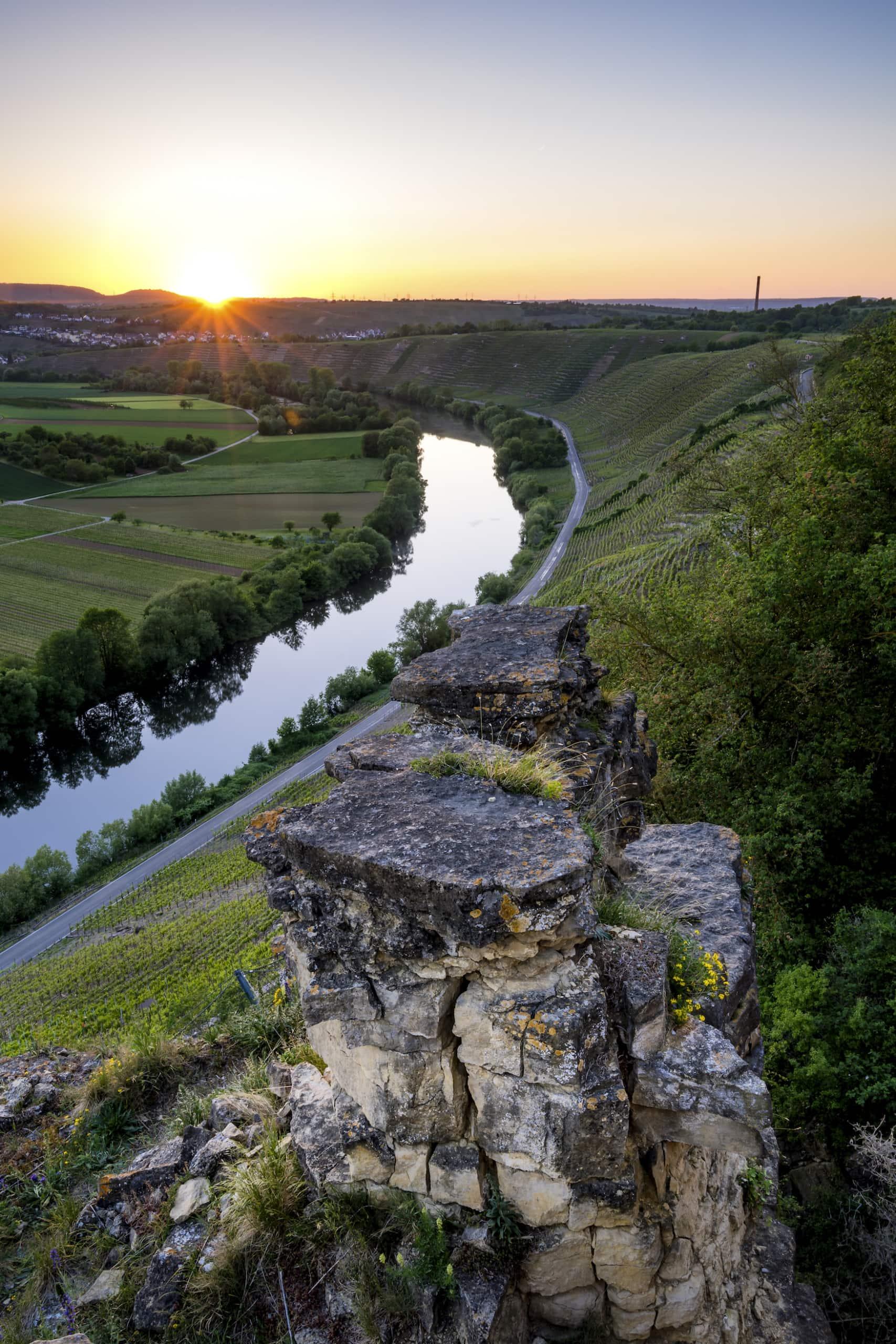 Neckar in Hessigheim mit Felsengärten beim Weinwandern in Baden-Württemberg