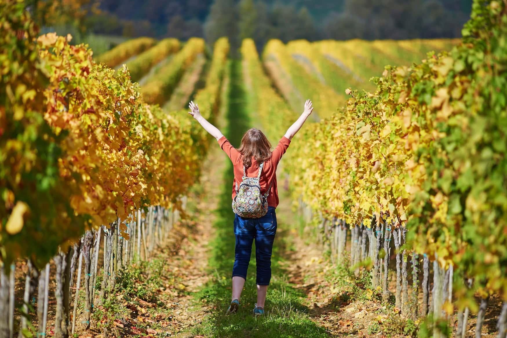 Weinwandern in baden-Württemberg: Frau mit Rucksack spaziert durch Weinreben
