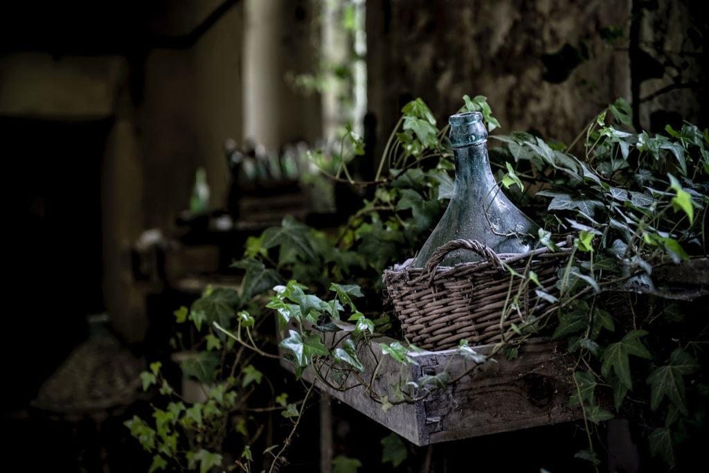 Gemütliche Kellereien um mit guten Tropfen zu versacken, Weinkellereien in Baden-Württemberg