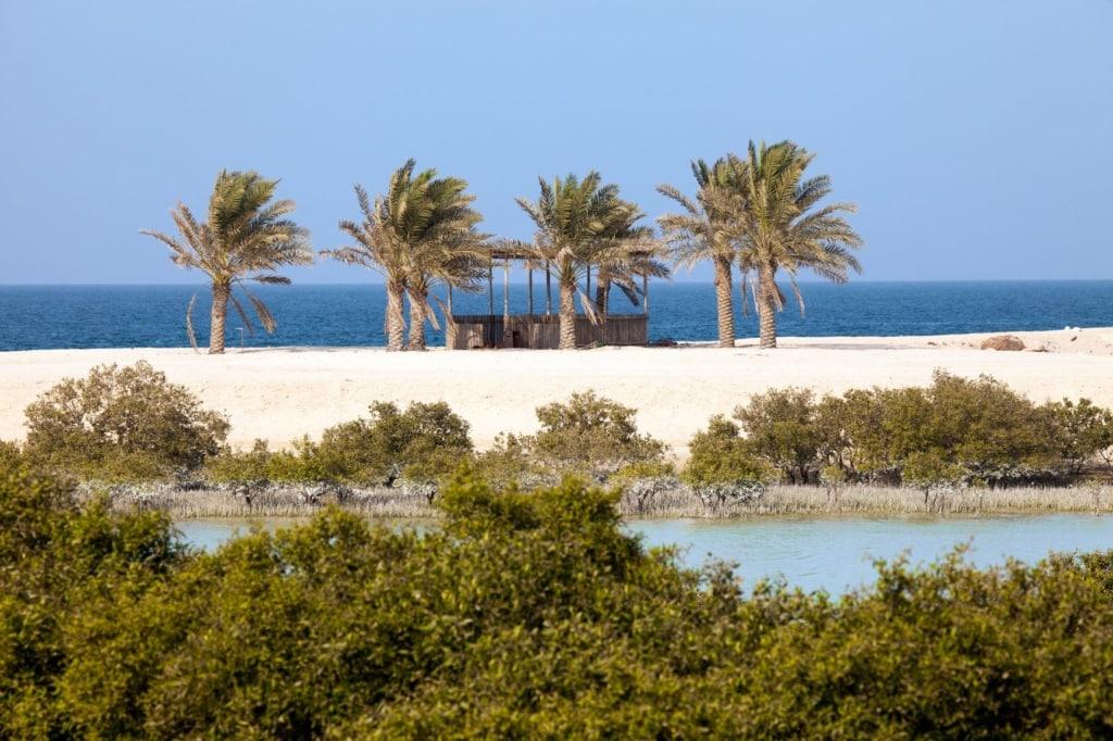 Strand auf Sir Bani Yas island