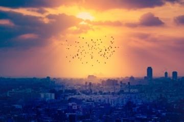 Skyline von Kairo