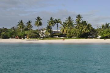 Diese 10 und weitere Gründe locken auf die Karibikinsel Barbados.
