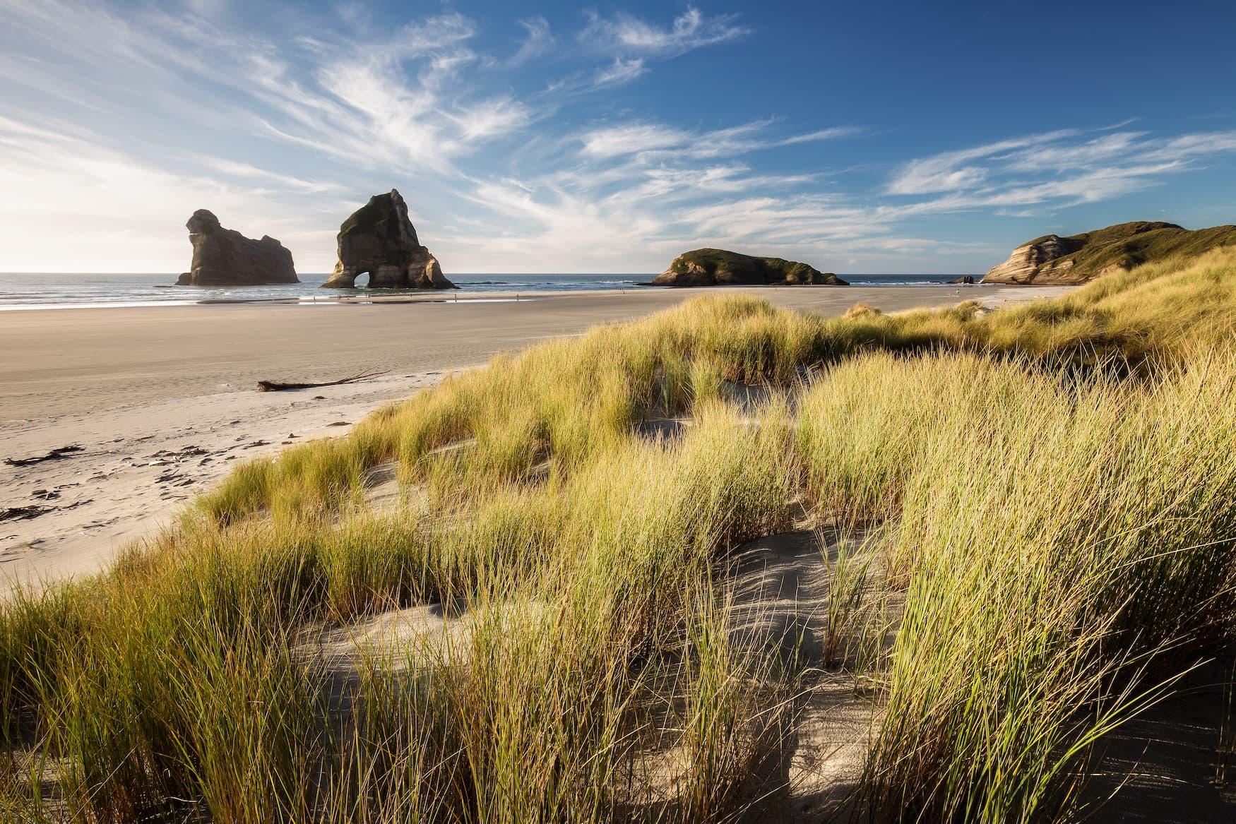 Dünen und Felsen am Wharariki Beach in Neuseeland