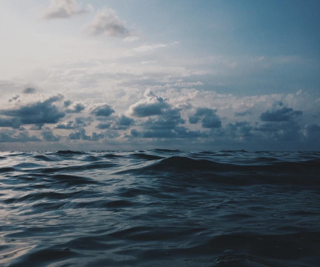 Nichts als Wasser. Erfolgloses Whalewatching