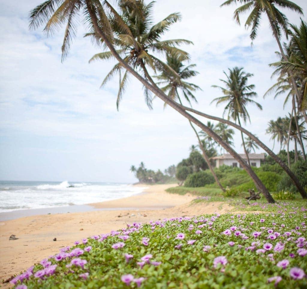 Ein malerischer Strand bei Hikkaduwa, Sri Lanka