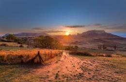 Landschaft im Free State Park