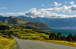 Straße entlang der Westküste Neuseelands