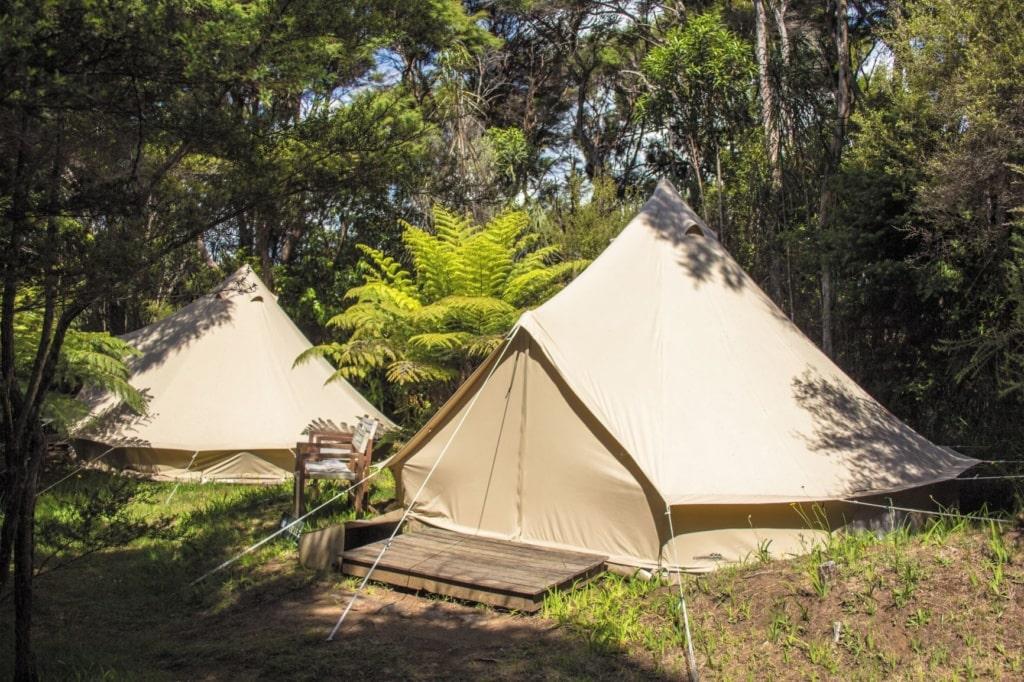 Glamping in Neuseeland: Solscape Raglan Waikato