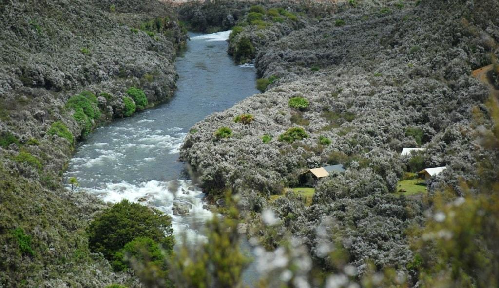Poronui Safari Camp am Fluss