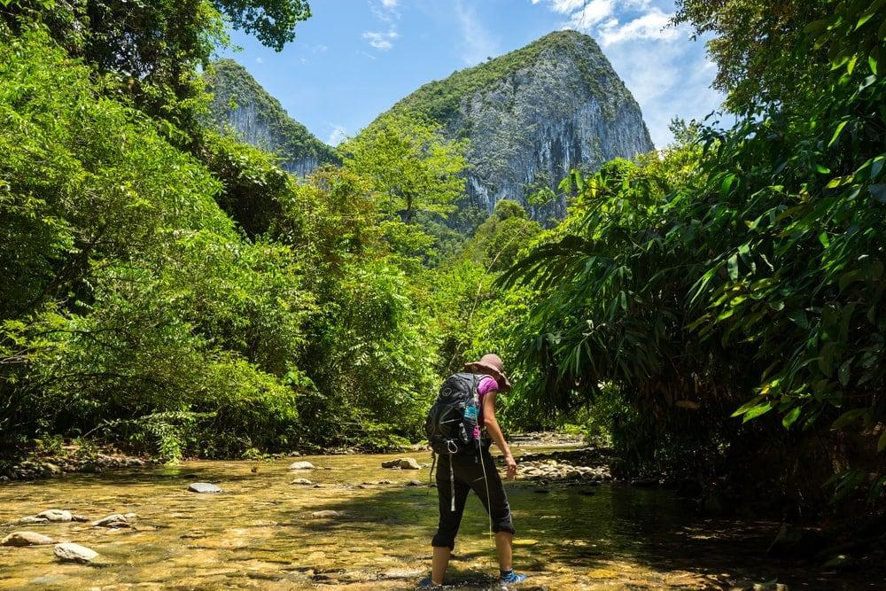 Wandern auf Borneo