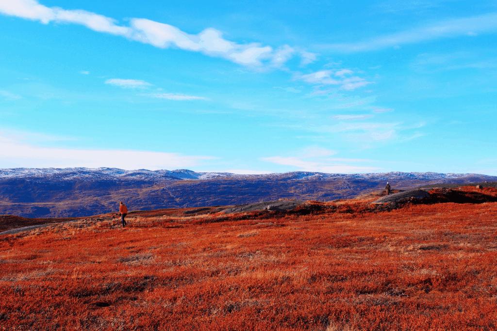 Farbenpracht Grönland. Hier in Kangerlussuaq