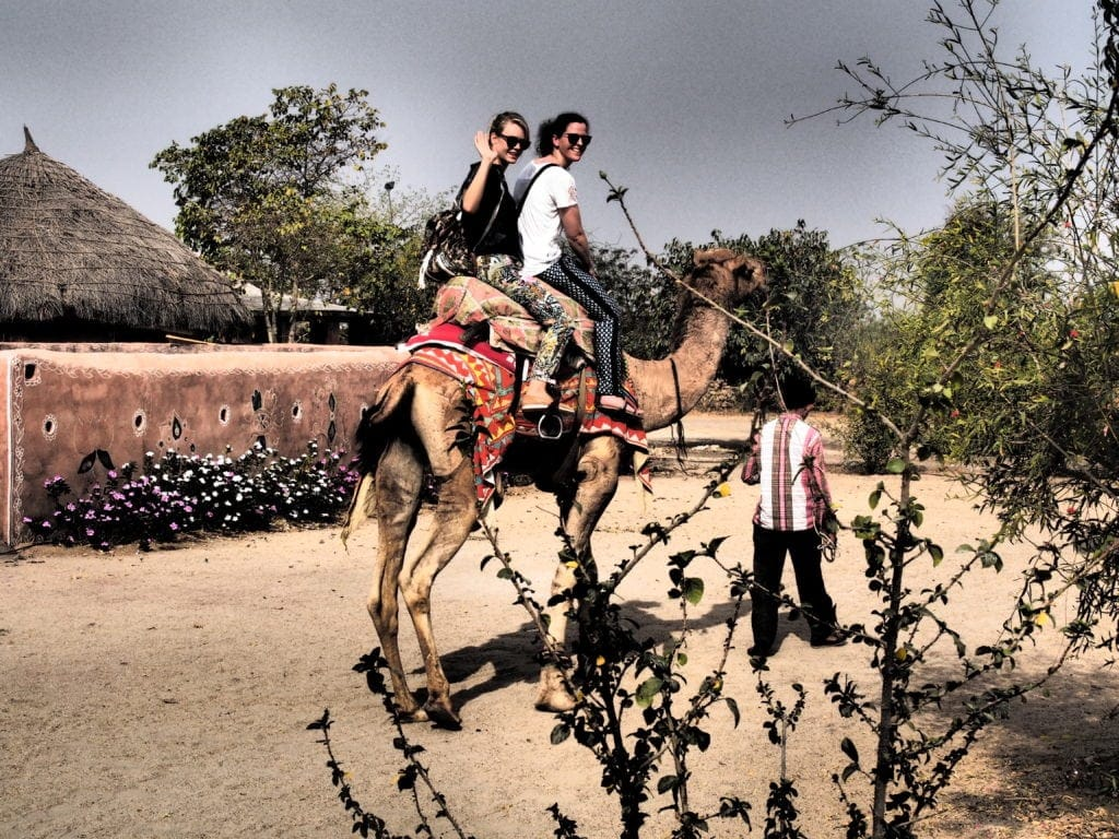 Kamel-Safari in Rajasthan