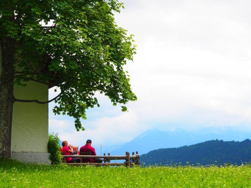 Kräuterwanderung in Garmisch-Patenkirchen