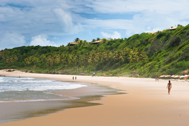 Von palmen gezierter Sandstrand in Brasilien