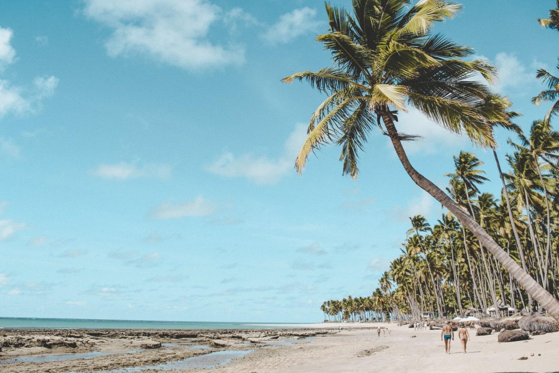 Postkartenidylle am Strand in Brasilien
