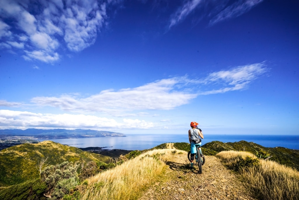 Eine Gruppe Bikerinnen unterwegs auf einem der längsten Trails in Wellington, Neuseeland