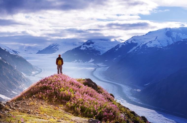 Wandern in Alaska: Mann genießt die Panormasicht auf die Berge