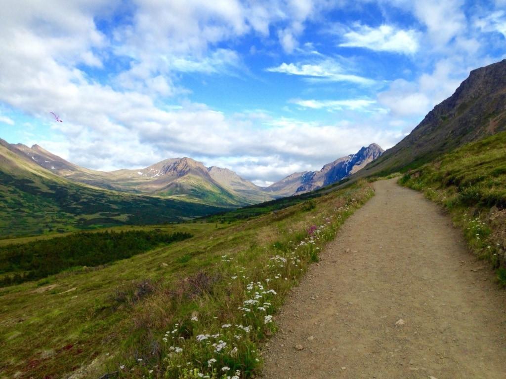 Wandern in Alaska: Trail zum Flattop Mountain