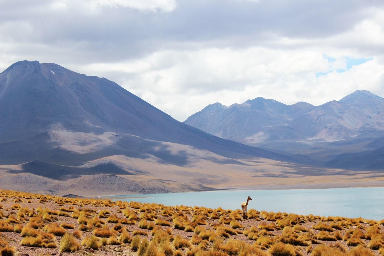 See in der Atacama Wüste iN Chile