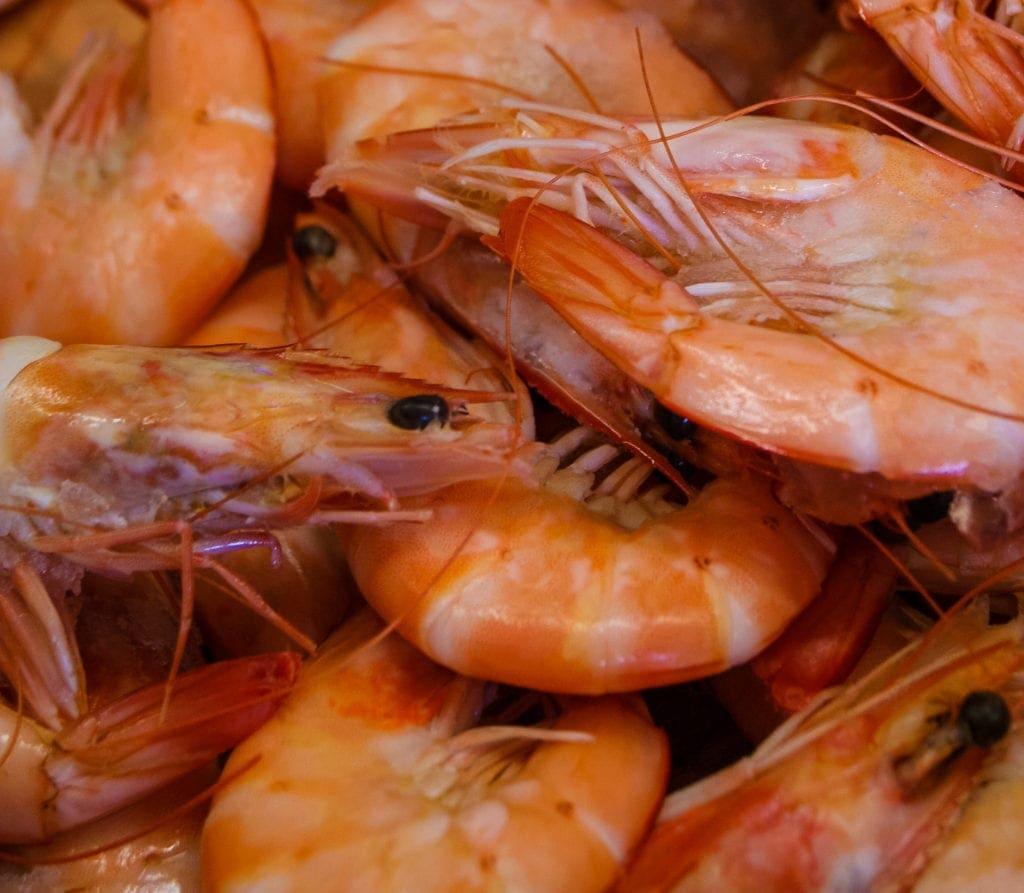 Krabben auf der Kanalinsel Jersey
