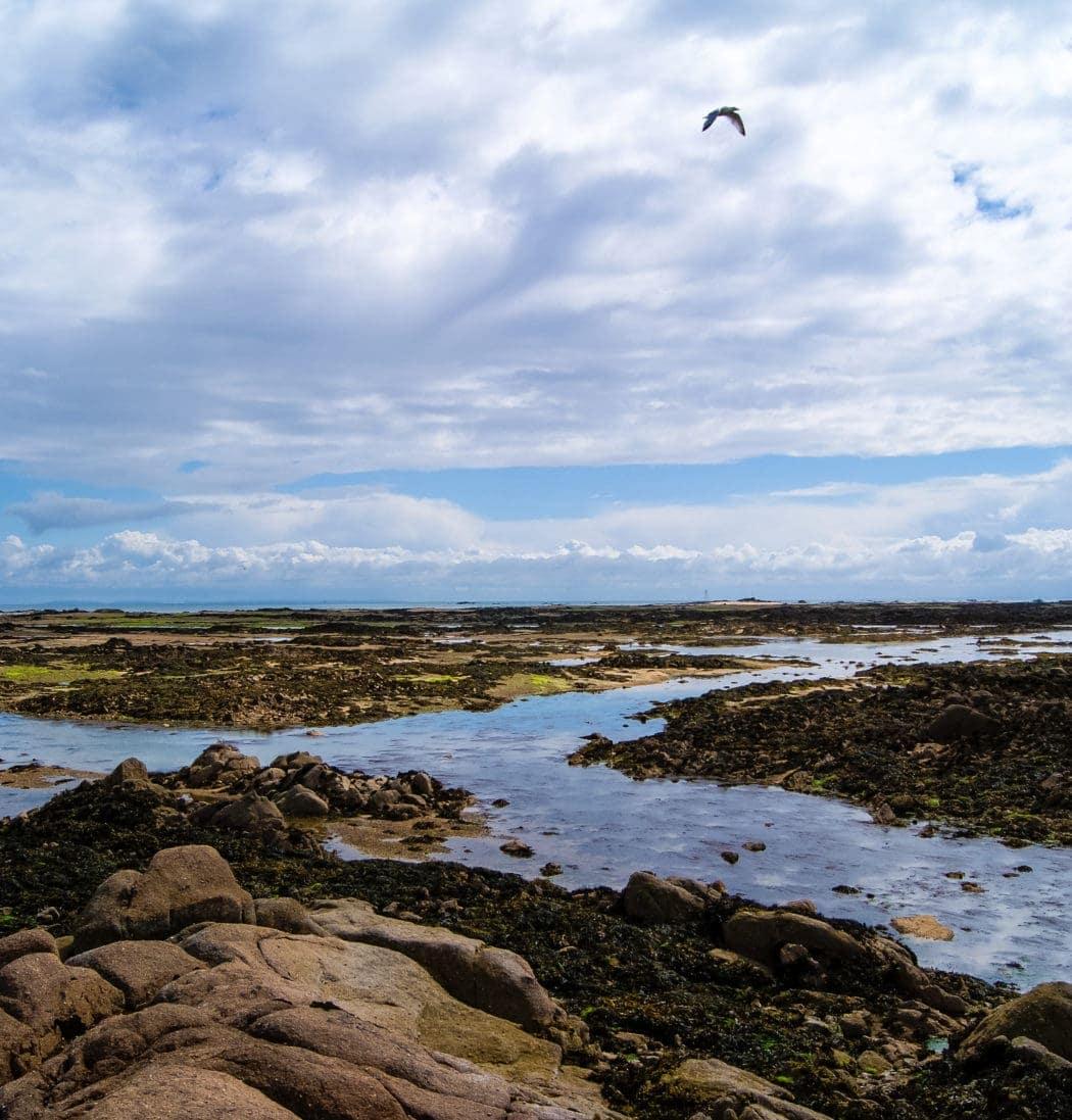 Küste auf der Kanalinsel Jersey