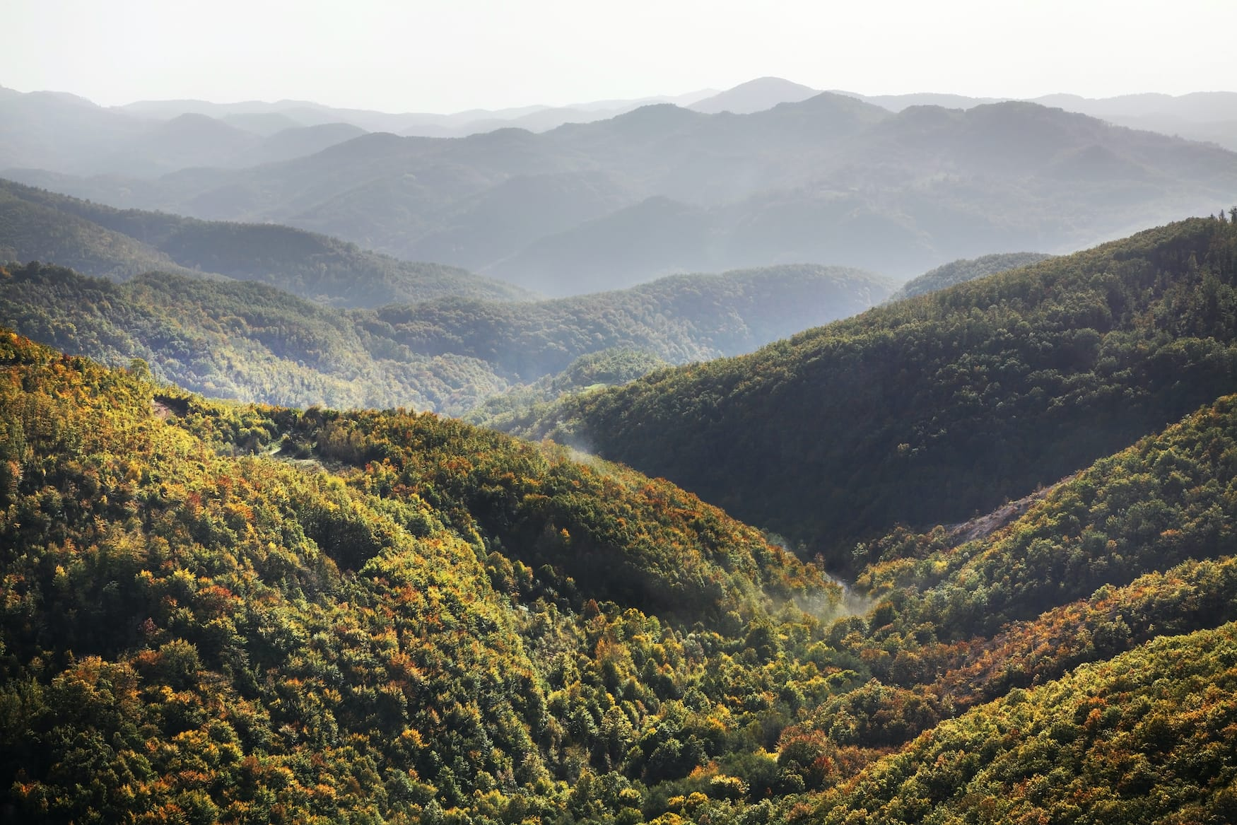 Vernebelter Blick aufs Radan-Gebirge iN Serbien