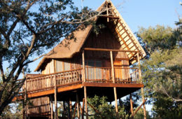 Bona Ntaba Tree House Lodge