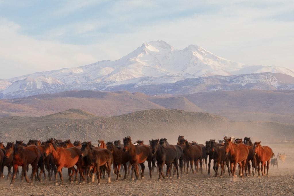 Die Region Kayseri in der Türkei liegt zwischen schneebedeckten Bergen und Sümpfen.