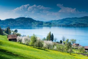 Malerischer Zugersee in der Schweiz