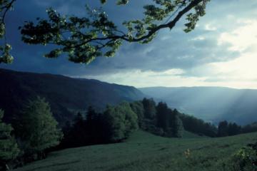 Wandern im Jura