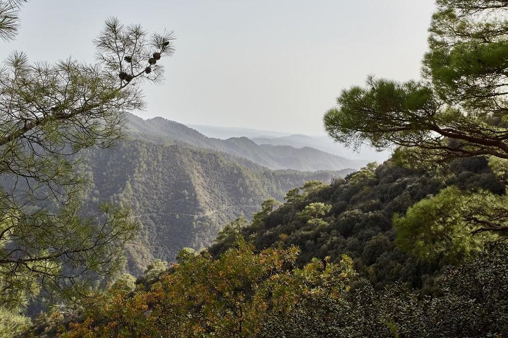 Wandern auf Zypern: unterwegs im Trodoos-Gebirge