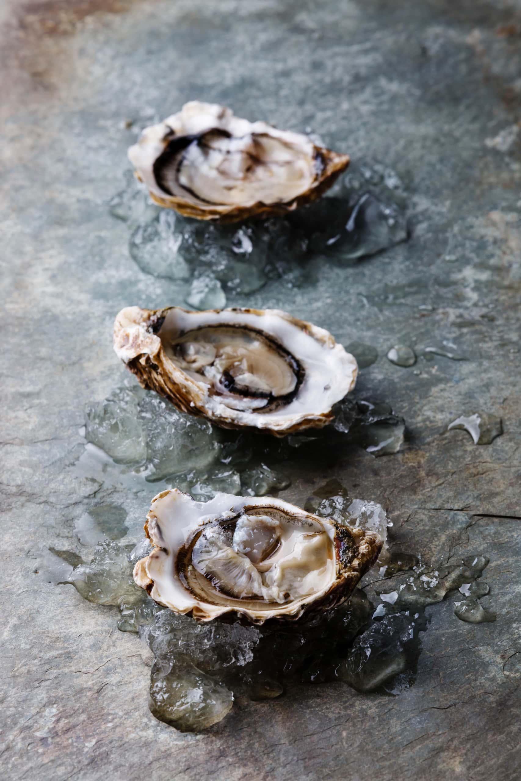 Drei geöffnete Austern aus Marennes-Oleron liegen serviert auf Steinplatte
