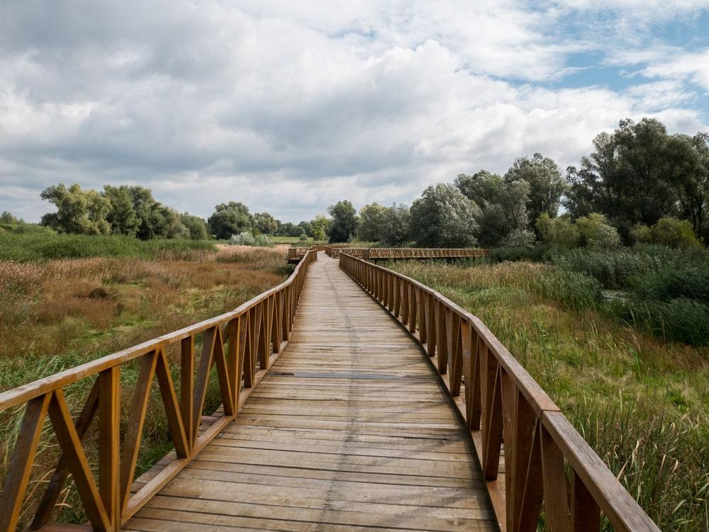 Naturpark Kopacki in Kroatien