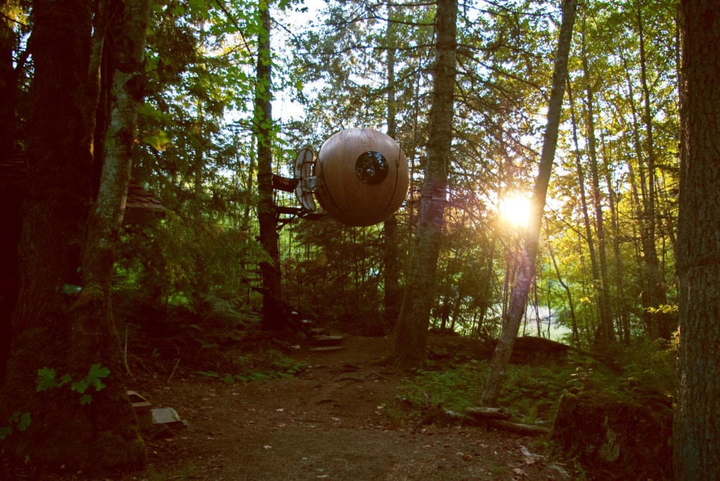 Willkommen in der Waldkugel in Kanada!
