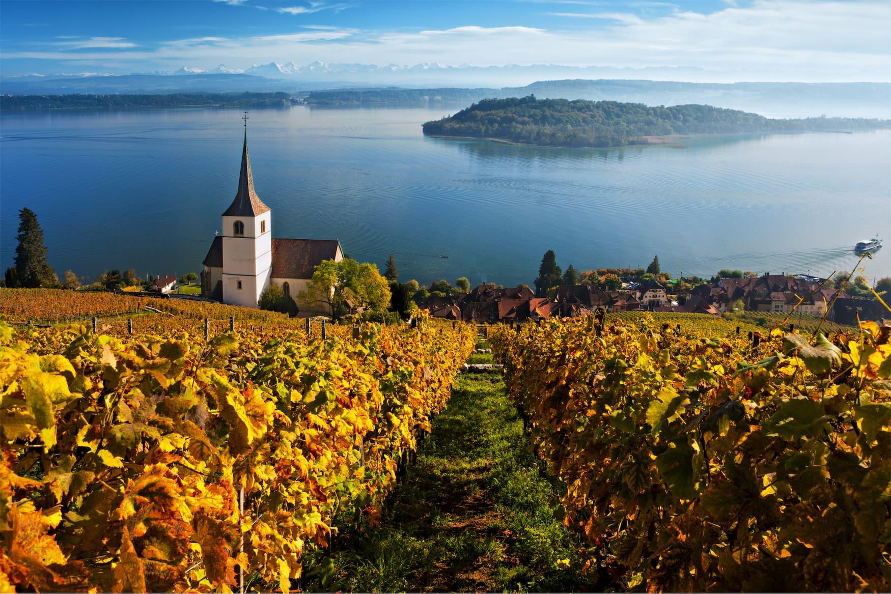 Ligerz im Kanton Bern, ein Weinbauerndorf am Bielersee in der Region Jura und Drei-Seen-Land. Blick über Kirche, Dorf und See auf die St. Petersinsel und die Berner Alpen.