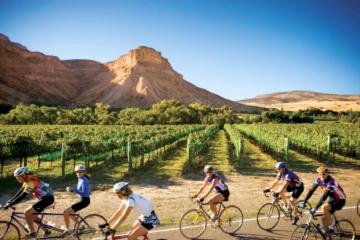 Fahrradrouten in Colorado: Weinberge von Palisade