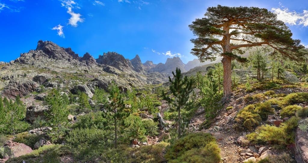 Wanderweg bei Asco auf Korsika