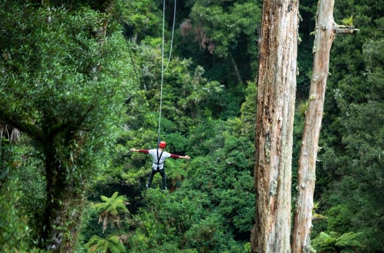 Mann breitet Arme aus bei Ziplining im Wald von Rotorua in Neuseeland
