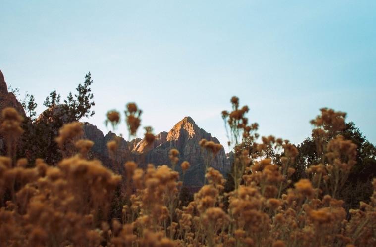 Aufnahme eines Bergs in der Natur von Utah