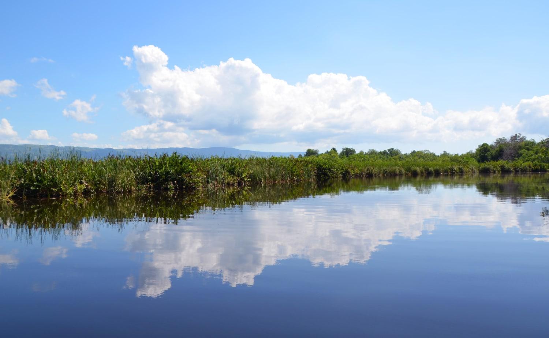 Black River auf Jamaika