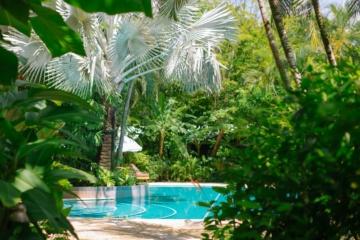 Hotelpool im Dschungel bei Nosara, Costa Rica