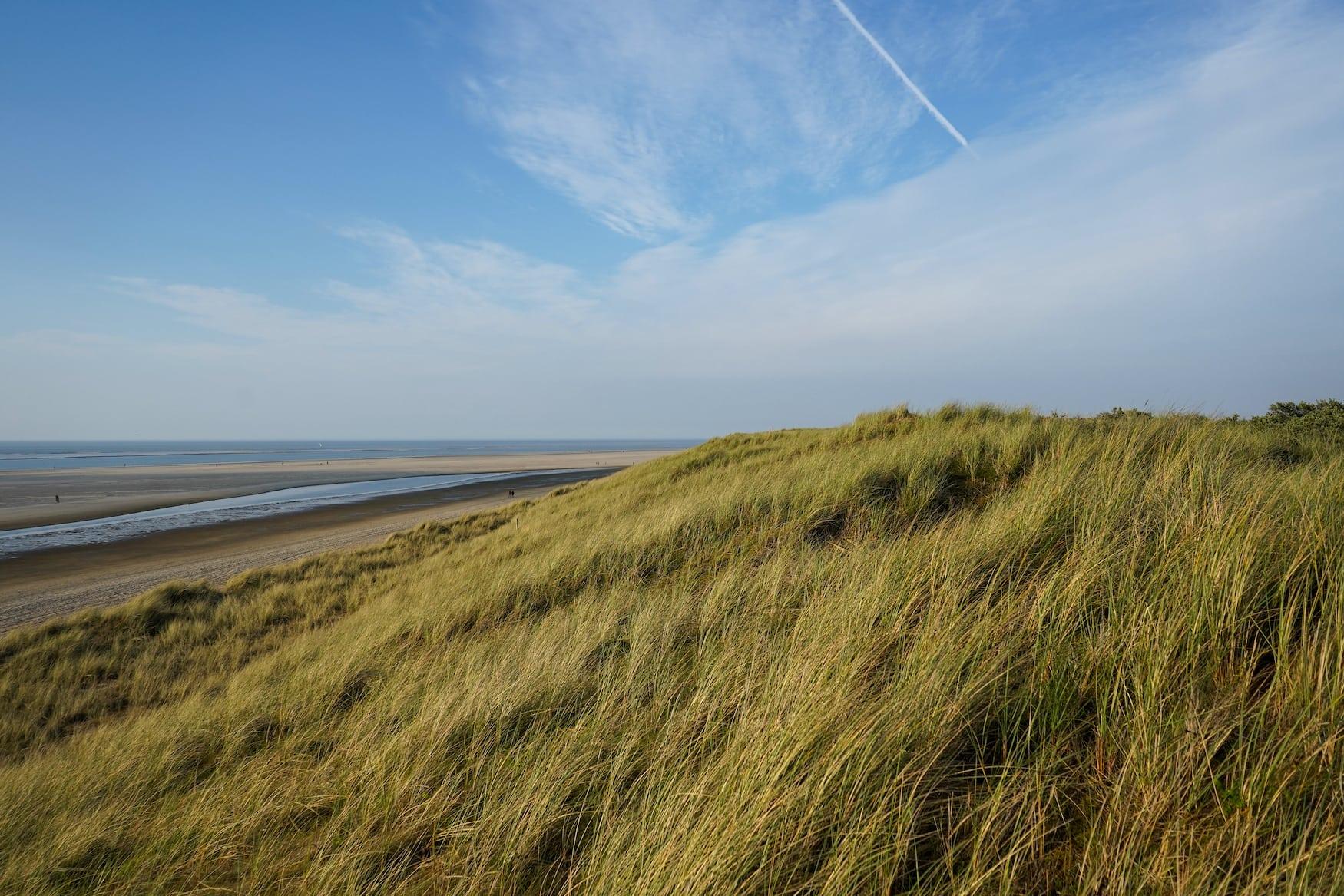 Dünen und Strand der Nordsee