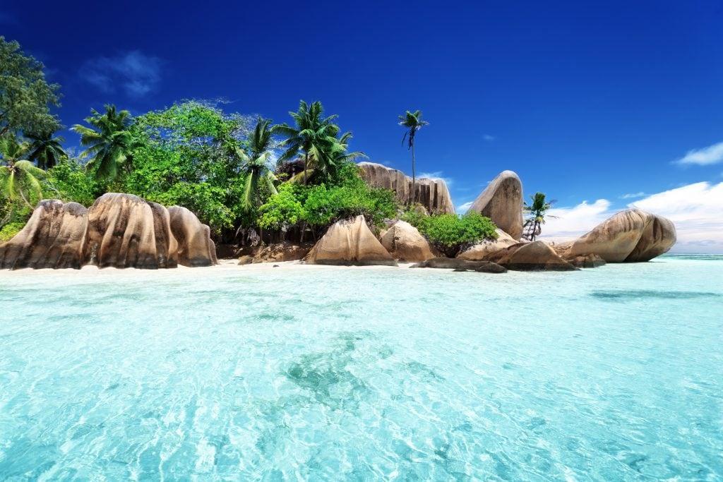Die Natur auf den Seychellen bringt nicht nur tolle Strände.