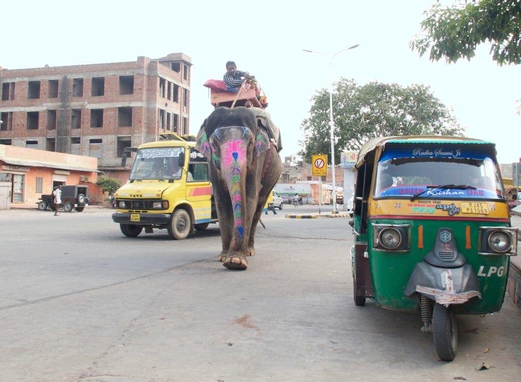 Der Straßenverkehr in Indien fordert allen Mut