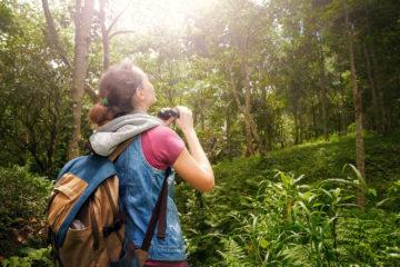 Frau mit Fernglas im Wald bei der Vogelbeobachtung