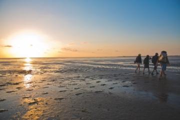 Wattwanderung bei Sonnenuntergang auf die Hallig Süderoog