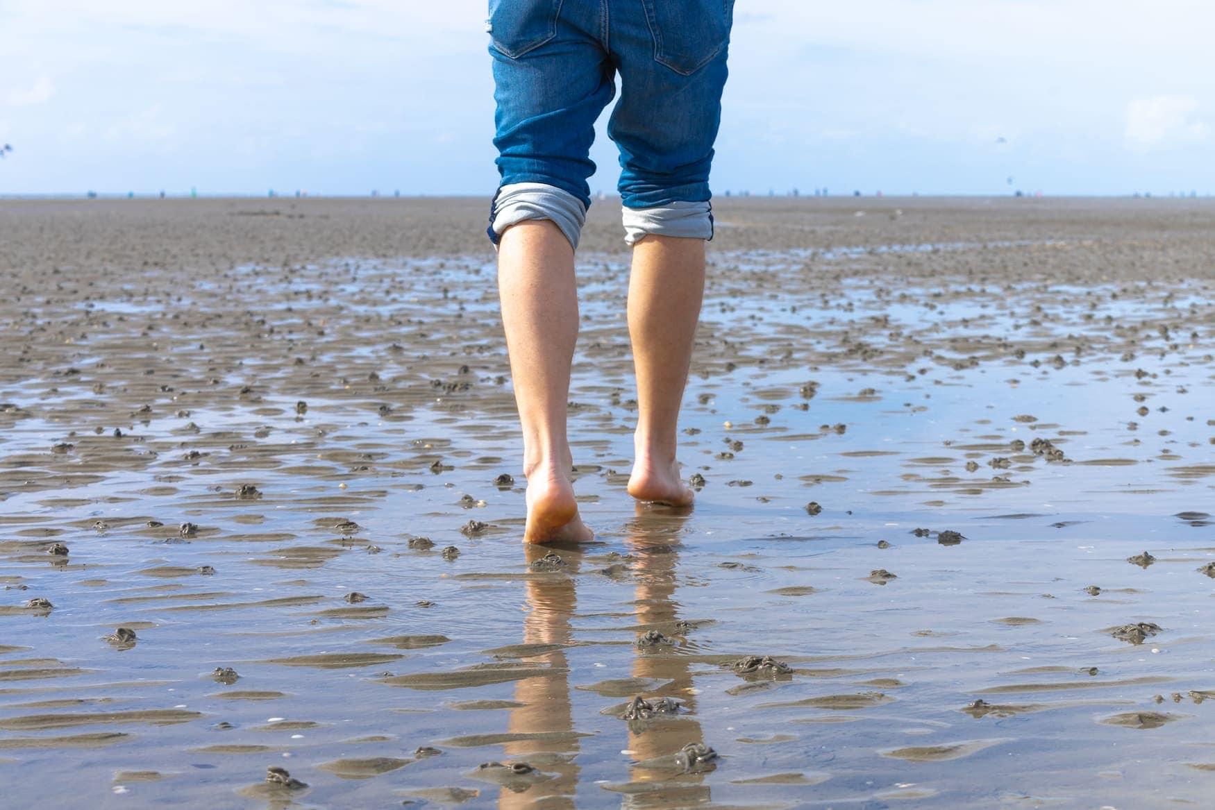 Person wandert barfuß durch das Wattenmeer in Schleswig-Holstein