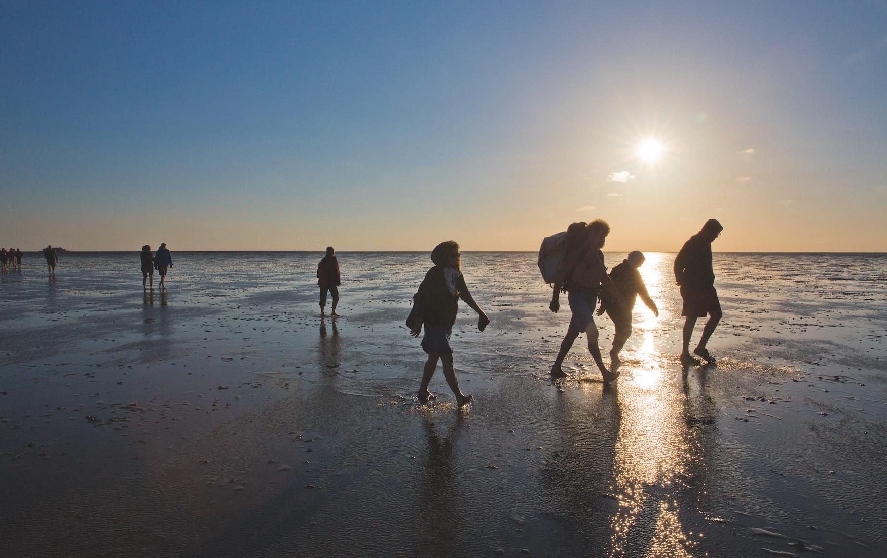 Gruppe wandert durch das Watt bis zur Hallig Süderoog