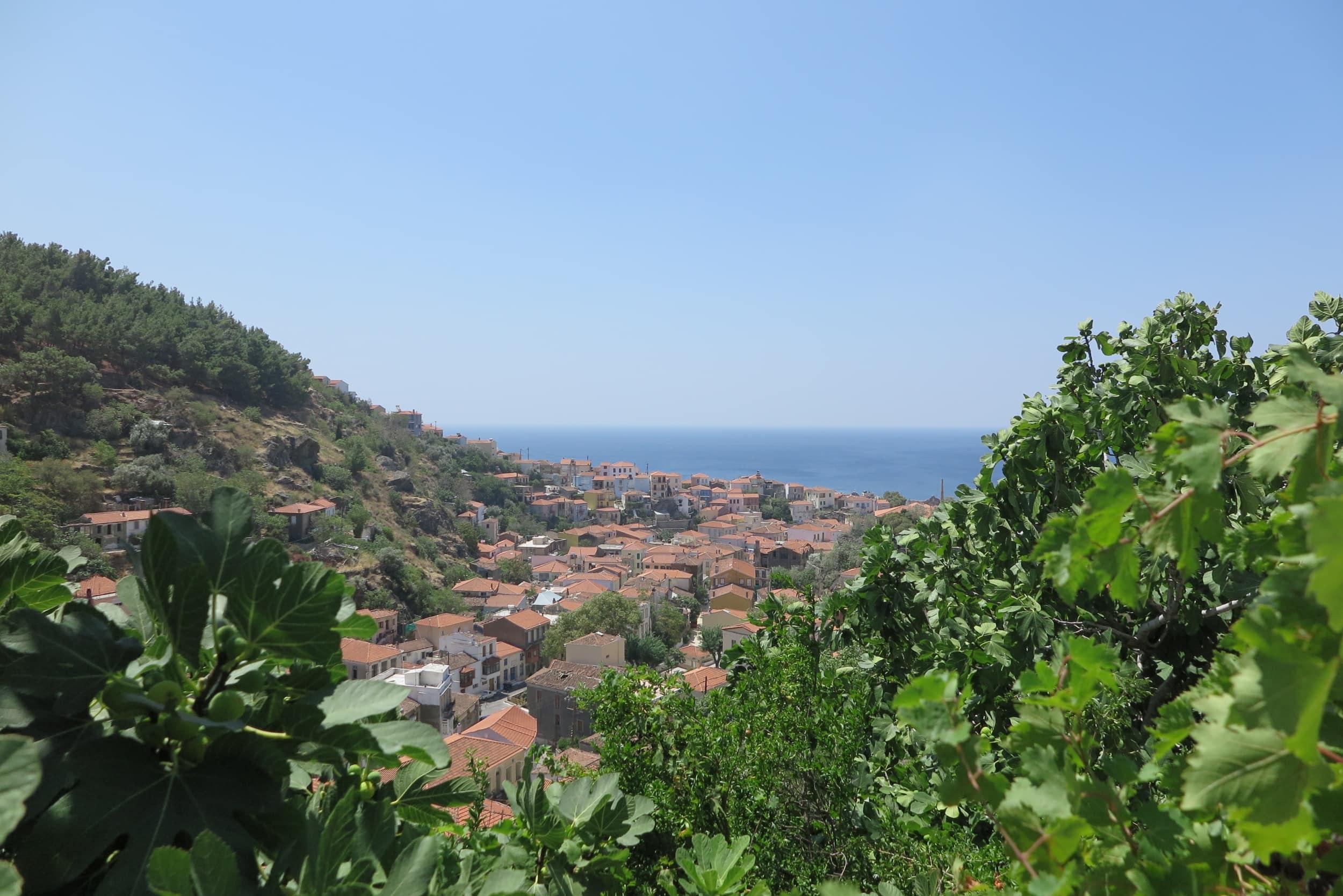 Ausblick auf das Mittelmeer aus Plomari